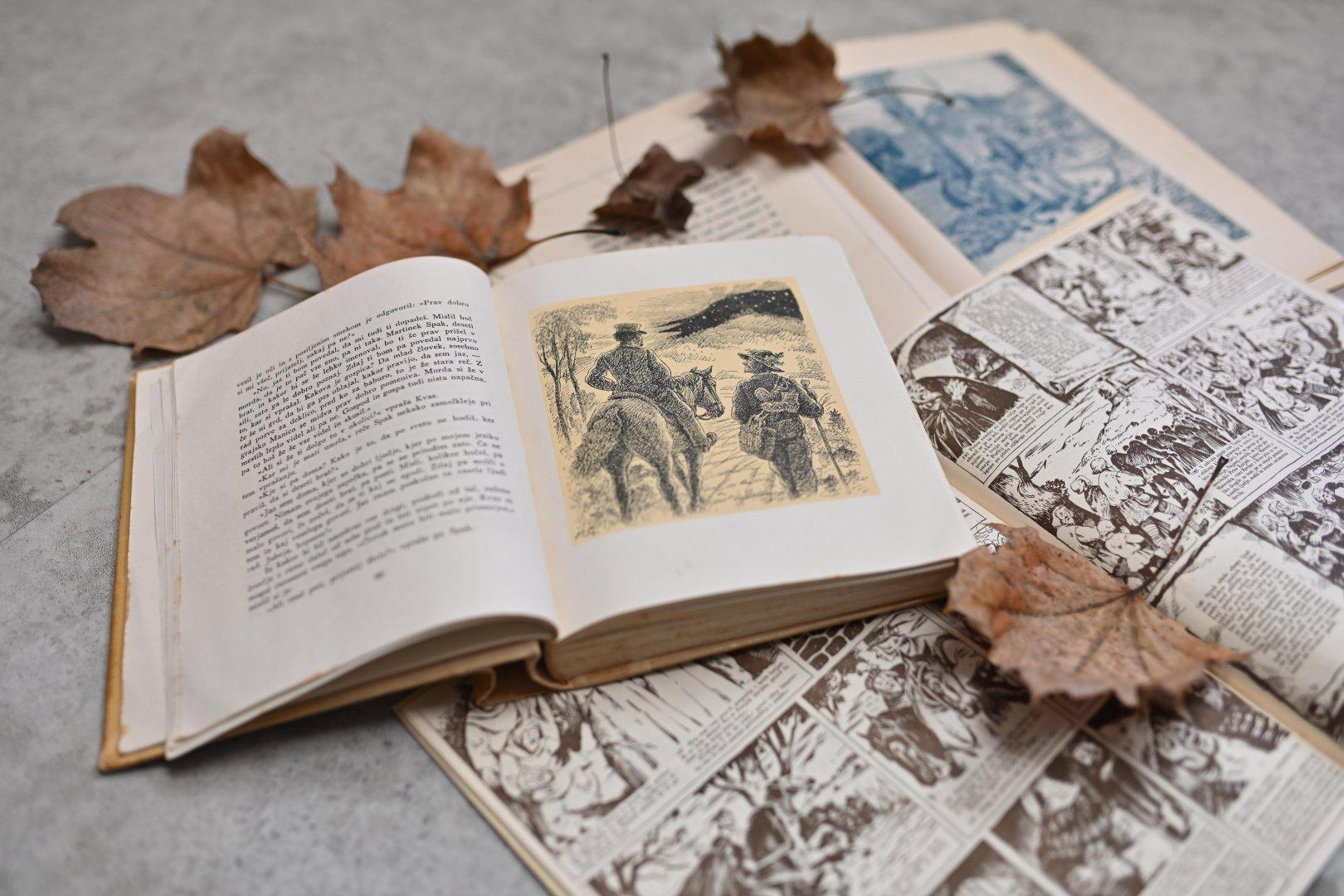 Prvi slovenski roman, Deseti brat